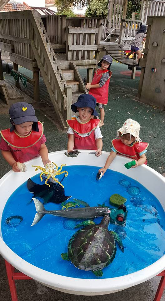 Playing with the sea creatures